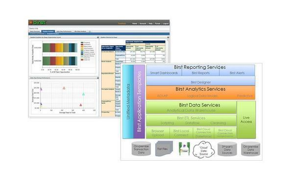 BI SaaS Style: BIRST Puts Query And Reporting In The Cloud