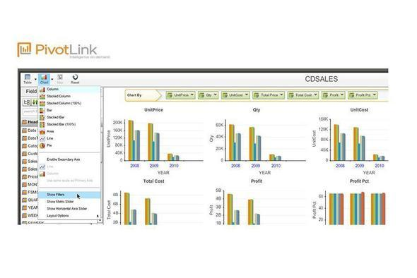 BI SaaS Style: PivotLink Apps Target Industries And Roles